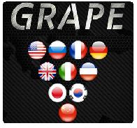 Голосовые переводчики Grape (Грейп)